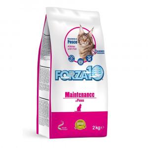 Forza10 MAITENANCE sausā barība kaķiem ar zivi 2kg