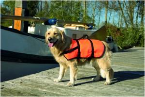 Beeztees Glābšanas veste suņiem L