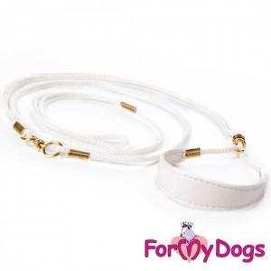 For My Dogs Izstāžu pavada