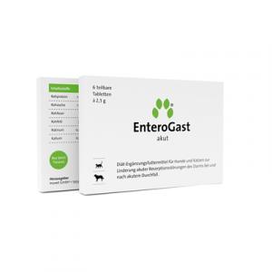 Inuvet EnteroGast  N6