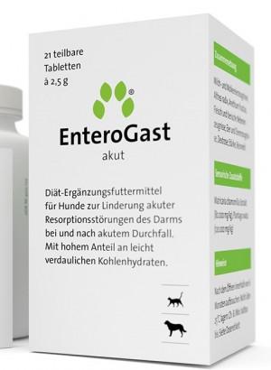 Inuvet EnteroGast  N21