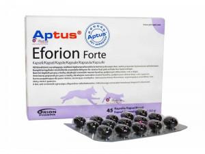 APTUS  EFORION Forte kapsulas N45