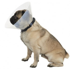 Pēcoperācijas  apkakle  BRAHICEFĀLA tpa suņiem  S 12CM