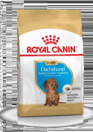 Royal Canin BHN Dachshund Puppy 1.5 kg