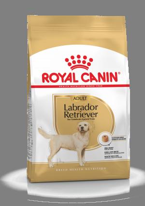 Royal Canin BHN Labrador Retrievier Adult 12 kg