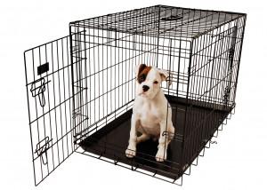 Show Tech American Cage Black With Plastic Tray 2 - metāla būris suņiem