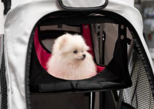 Petstro Small Pet Hammock - šūpuļtīkls ratiem