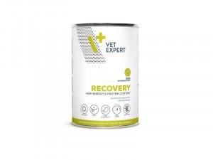 4T Veterinary Diet Recovery Dog 4 x 400g + DĀVANĀ 400g