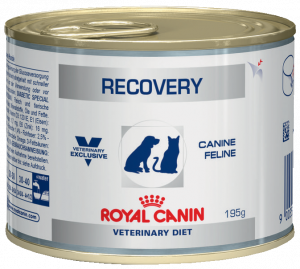 Royal Canin Recovery Wet Cat/Dog 6 x 200g