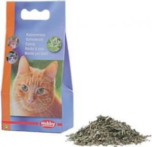 Nobby Catnip kaķumētra 25g