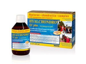 Hyalchondro EC plus 2x225ml