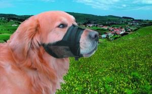 Nobby uzpurnis suņiem  (melns)