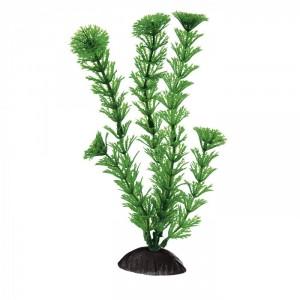 Ferplast plastmasas augs Cabomba 8