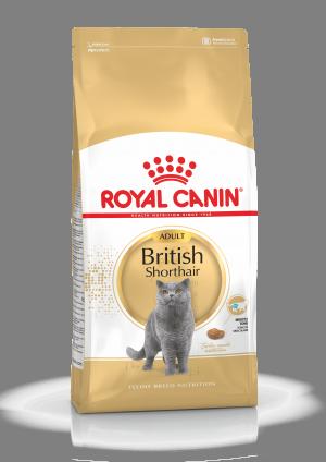 Royal Canin FBN British Shorthair 0.4 kg
