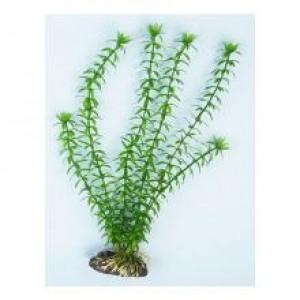Akvārija augs plastmasas AP-012