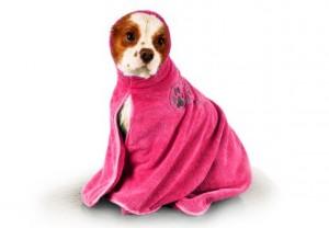 Show Tech+ Dry Dude Intermediate Hot Pink Pet Towel For Dogs And Cats , Show tech mikrošķiedru dvielis ar izšuvumiem ar kapuci ,Rozā